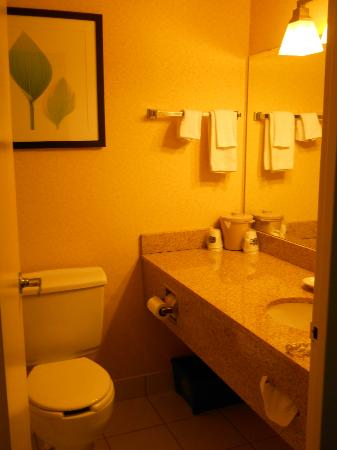 Fairfield Inn & Suites Belleville: Bath