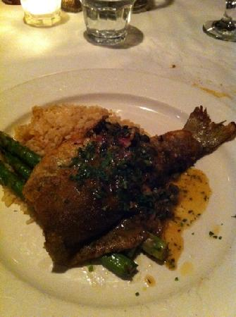 Le Paradis Brasserie-Bistro: fish of the day