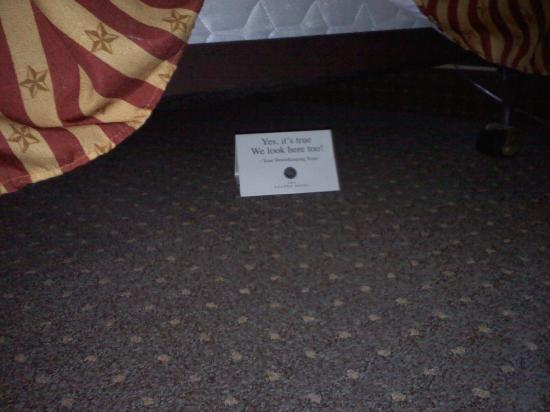 The Golden Hotel, an Ascend Hotel Collection Member: The card under the bed reads, Yes it's true, we look here to. Love it!