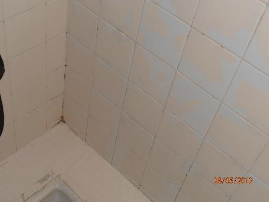Logis Le Charlet: la douche