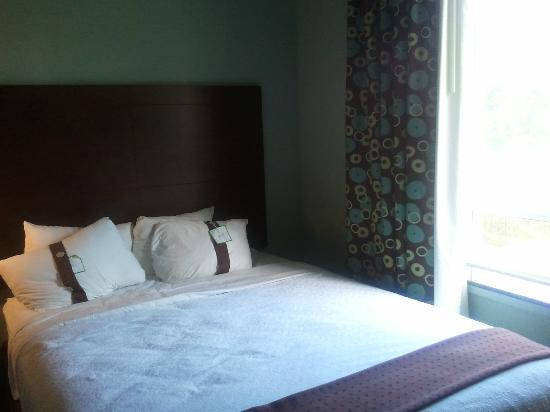 Holiday Inn Hotel & Suites, Williamsburg-Historic Gateway: room