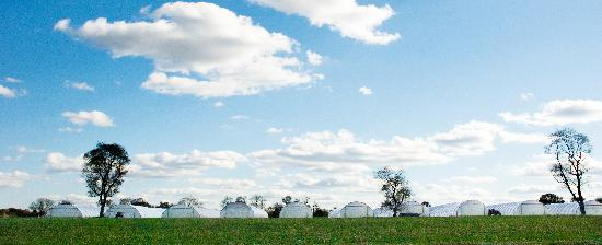 Blue Moon Acres: high tunnels in the horizon