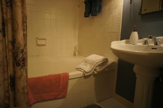 Castle Garden Bed and Breakfast: bathroom