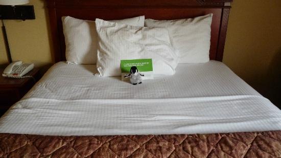 來福拉昆塔套房飯店照片