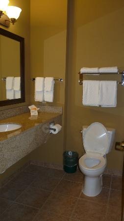 La Quinta Inn & Suites Rifle: Bathroom