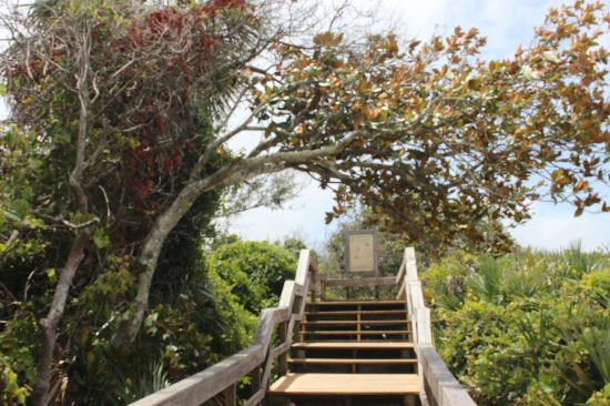 Guana Tolomato Matanzas National Estuarine Research Reserve: Steps are easy and scenic