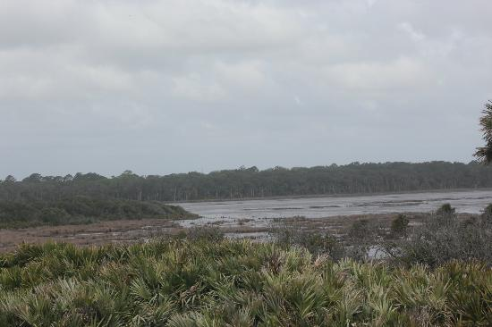Guana Tolomato Matanzas National Estuarine Research Reserve: Wetlands behind parking lot