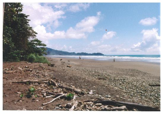 Travel Around Costa Rica Transportation and Guides: The beach near Domincalito