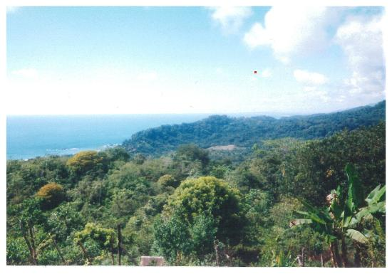 Travel Around Costa Rica Transportation and Guides: View from hill-jungle side off of Dominicalito coast