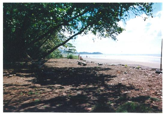 Travel Around Costa Rica Transportation and Guides: Beach at Domincalito