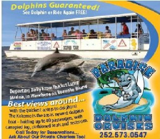 Outer Banks Paradise Dolphin Cruises on the Kokomo-Day Boat Tour