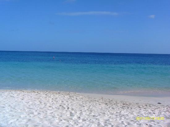 Coyaba Beach Resort : Beach