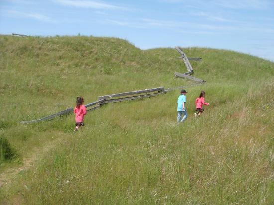 San Juan Island National Historical Park: Trail/meadow at Cattle Point Lighthouse next to American Camp