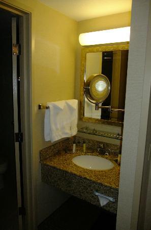 DoubleTree by Hilton Santa Fe: Bathroom with wonderful mirror