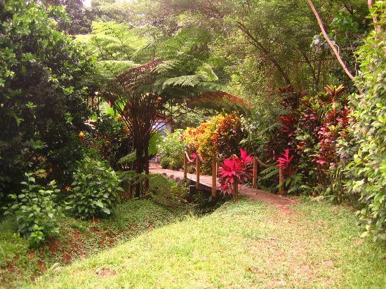 Mermaid's Secret - Riverside Retreat: The bridge and entrance path