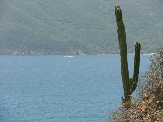 Parque Nacional Natural Tayrona: Parque Tayrona