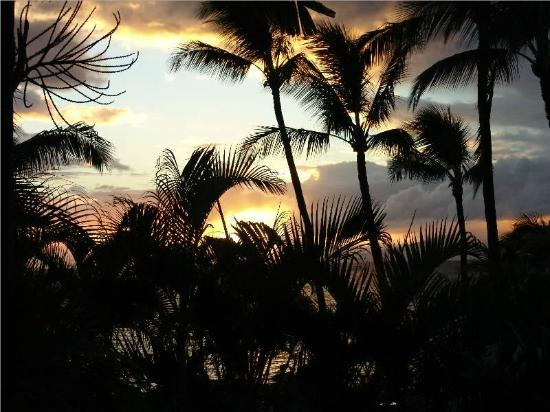 Hono Koa: Sunset from room