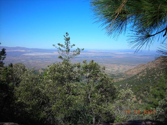 Madera Canyon: View from Roger's Rock looking westward
