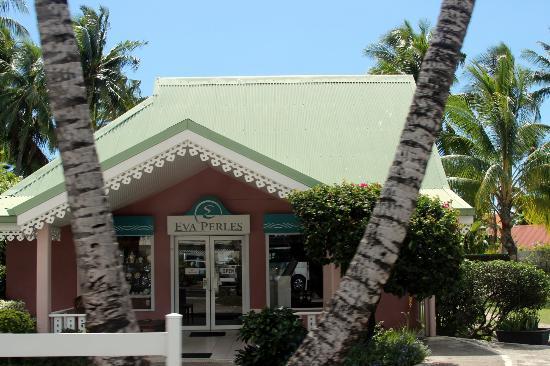 Eva Perles Pearl Buying : Storefront