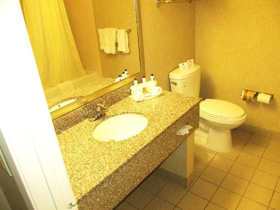 Best Western Plus Anaheim Orange County Hotel: Clean Bathroom, very spacious