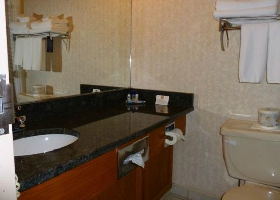 Best Western Seven Oaks Hotel: Bath
