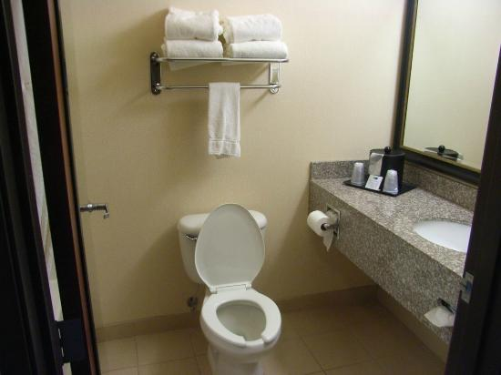 Holiday Inn Express & Suites Seaside-Convention Center: Restroom