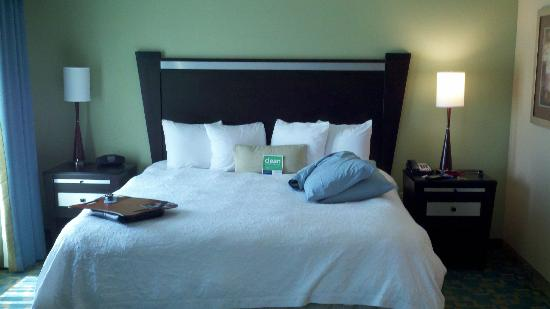 Hampton Inn & Suites Beach Boulevard/Mayo Clinic Area: Room w/ King Sz Bed (brought my own full size pillows)