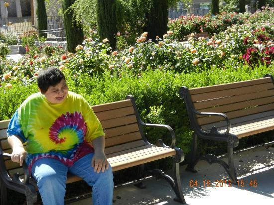 El Paso Municipal Rose Garden: My Daughter Enjoying A Beautiful Spring  Morning
