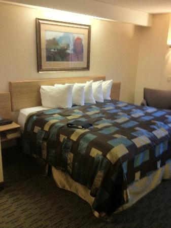 Days Inn Eagan Minnesota Near Mall of America: King Bedded Room
