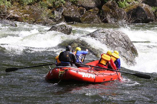 Lochsa River Rafting - ROW: Dropping into Lochsa Falls