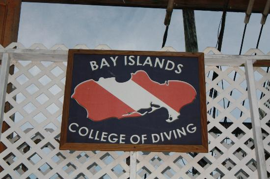 Bay Islands College of Diving: BICD