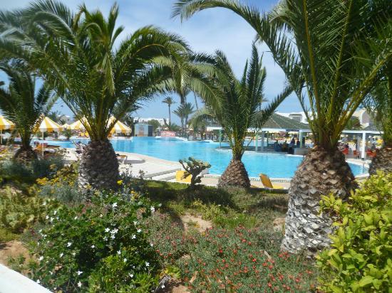 Giardino e piscina picture of djerba holiday beach - Piscina borgaro torinese ...