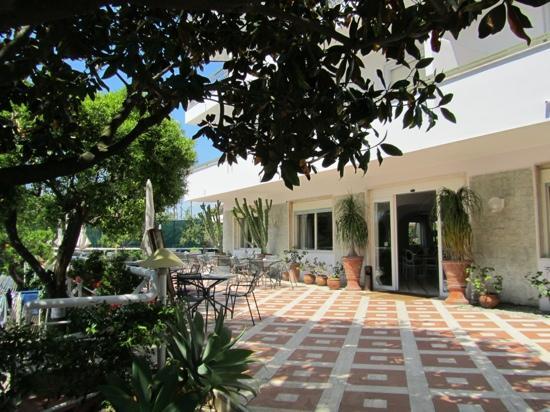Alpha Hotel: hotel terrace & entrance...