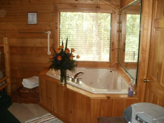 Cabin Fever Resort: Heaven in a TUB
