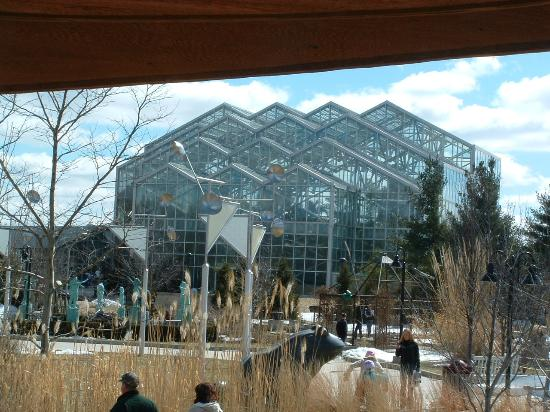 Frederick Meijer Gardens Building Picture Of Frederik Meijer Gardens Sculpture Park Grand
