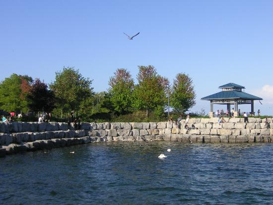 Mississauga, Canada: Families and friends leisurely spending quality time