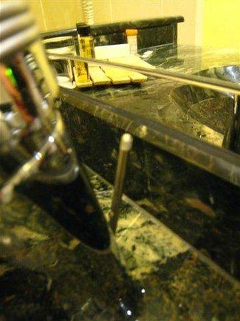 เฟรเซอร์สวีทส์เลอคลาริดจ์ ชองส์เอลิเซ่: missing top piece for sink drain lifter
