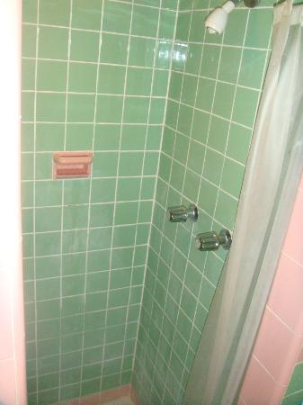 Point Pleasant Manor: King Room- Shower stall