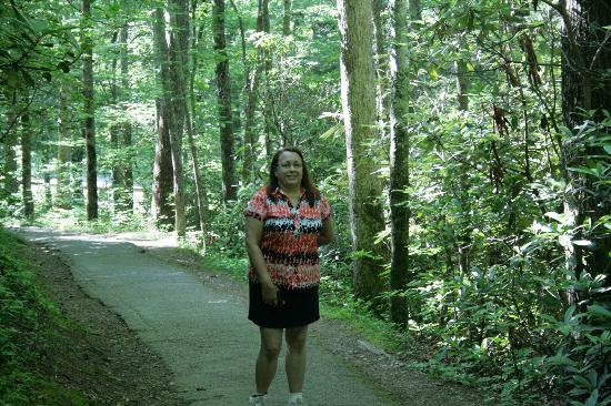 Pigeon Forge Motor Lodge: On the trail to Laural Falls