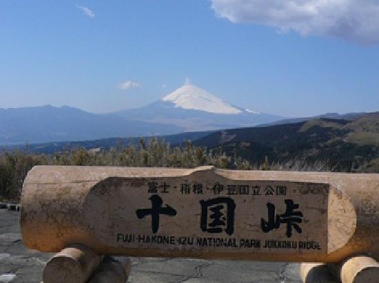 Kannami-cho, Japão: 綺麗な富士山!