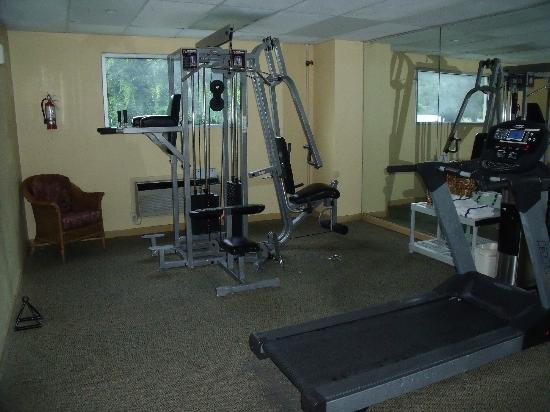 Quality Inn and Suites Airpark East: Fitness Rm