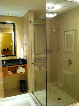 Renaissance Chicago O'Hare Suites Hotel: Huge shower!