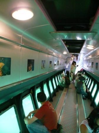 Miura, Japan: 船底へ潜ると海の中!