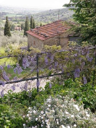 Villa Ugo: View from Liliana