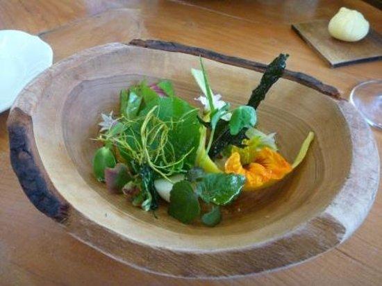 Saison: Unique and excellent salad