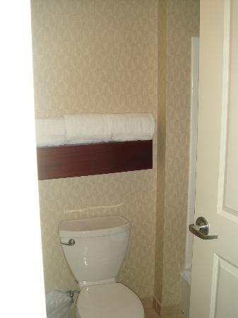 Residence Inn Miami Airport: Bathroom