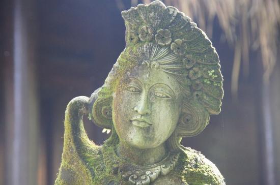 Bali Eco Resort and Adventure: Art