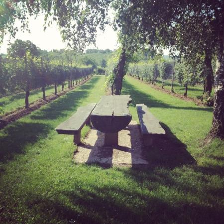Agriturismo Riva de Milan