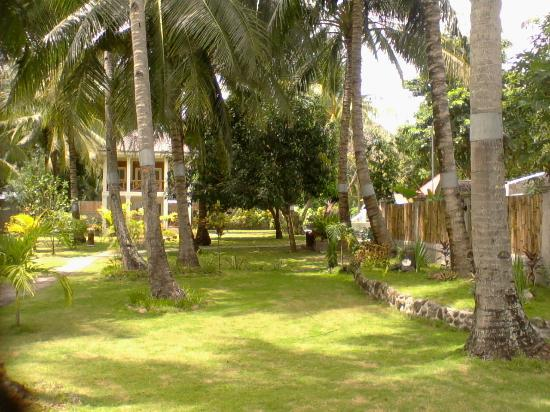Puertocita's Beach Resort: The Ground for picnic!