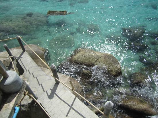 เกาะเต่าแบมบูฮัท: Stairs to the ocean, can easily go straight from the room.